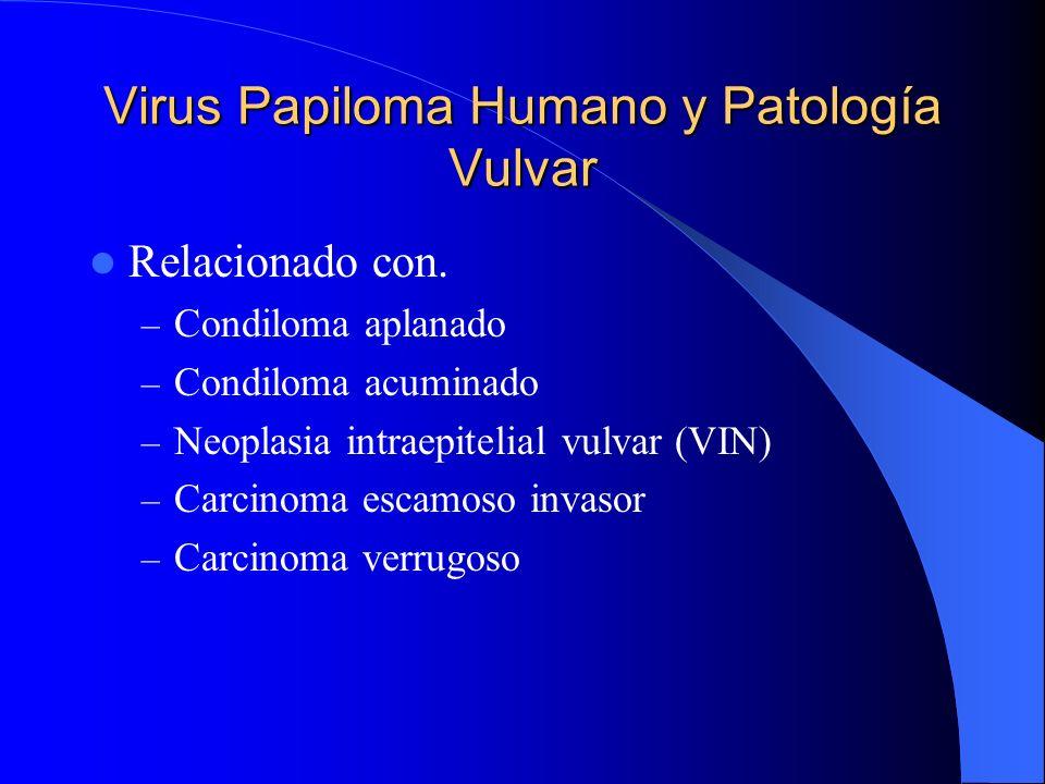 Virus Papiloma Humano y Patología Vulvar