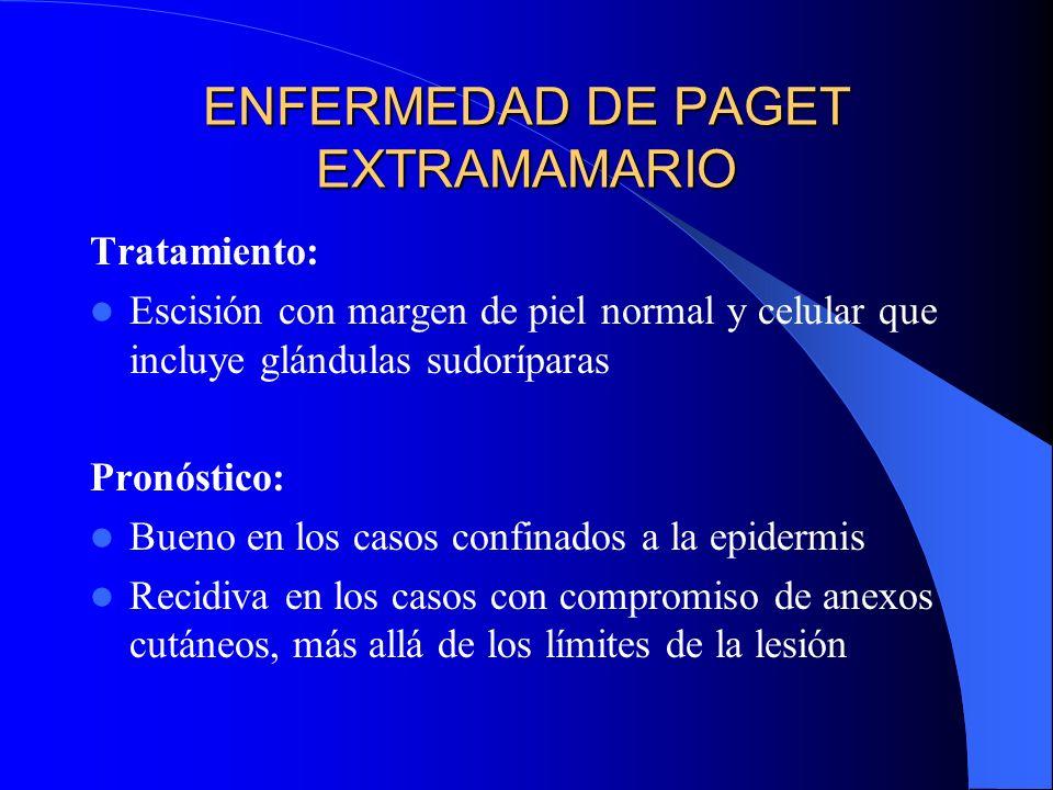 ENFERMEDAD DE PAGET EXTRAMAMARIO