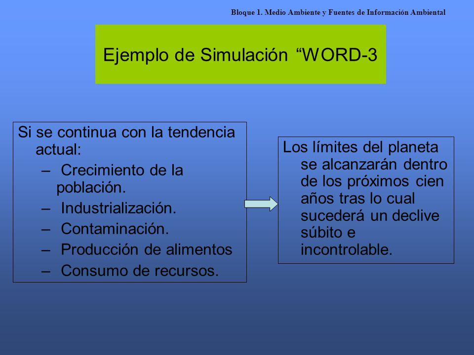 Ejemplo de Simulación WORD-3