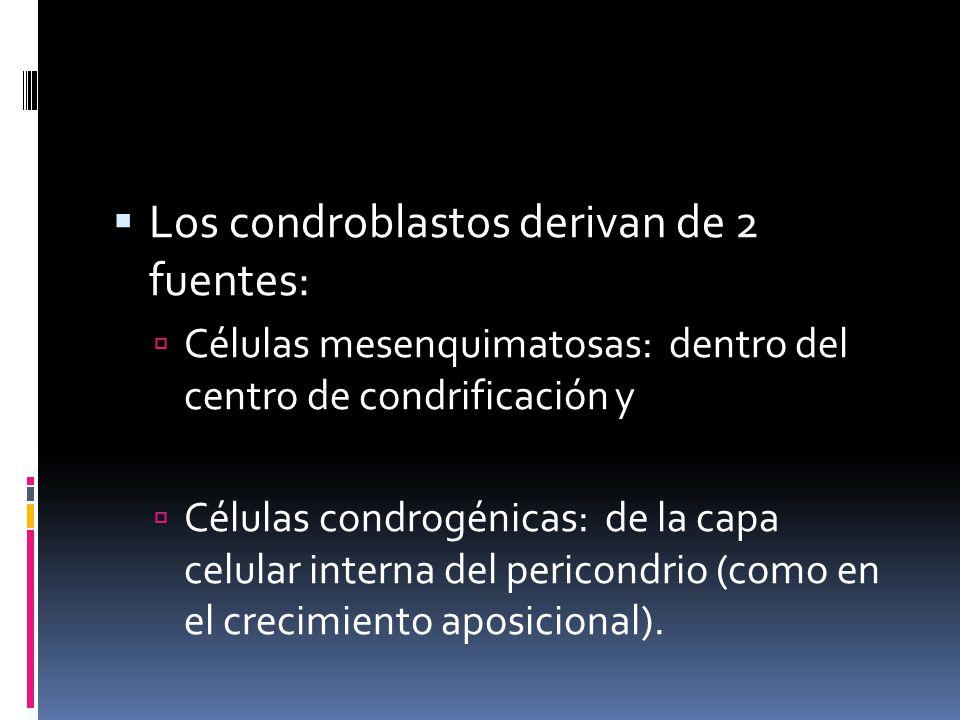 Los condroblastos derivan de 2 fuentes: