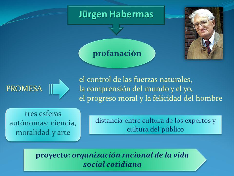 proyecto: organización racional de la vida social cotidiana