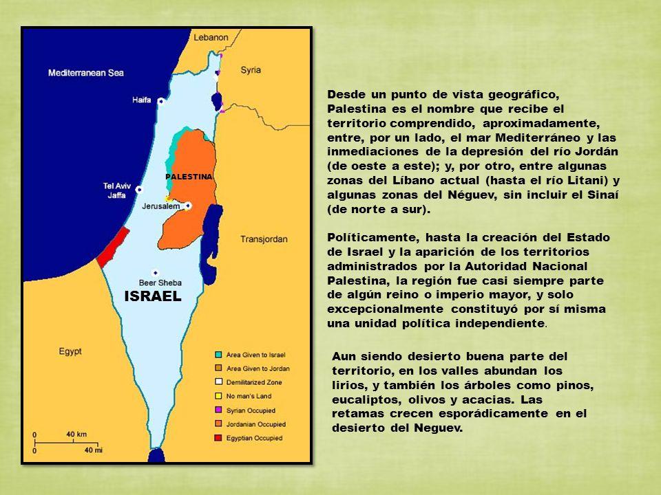 Desde un punto de vista geográfico, Palestina es el nombre que recibe el territorio comprendido, aproximadamente, entre, por un lado, el mar Mediterráneo y las inmediaciones de la depresión del río Jordán (de oeste a este); y, por otro, entre algunas zonas del Líbano actual (hasta el río Litani) y algunas zonas del Néguev, sin incluir el Sinaí (de norte a sur).