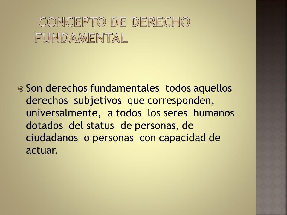 CONCEPTO DE DERECHO FUNDAMENTAL