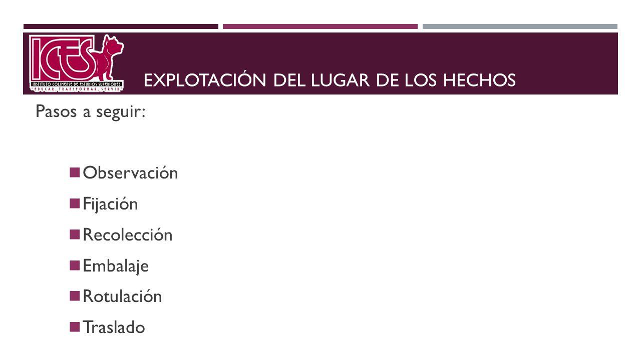 EXPLOTACIÓN DEL LUGAR DE LOS HECHOS
