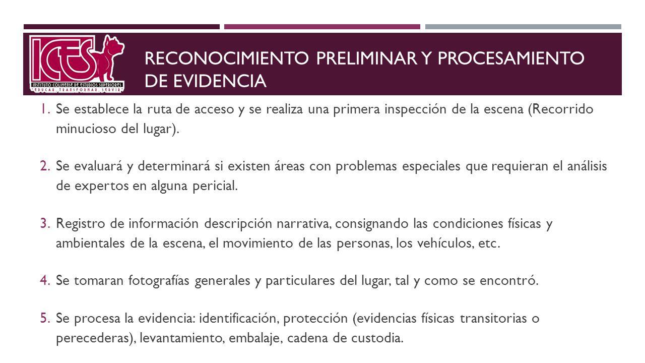 RECONOCIMIENTO PRELIMINAR Y PROCESAMIENTO DE EVIDENCIA