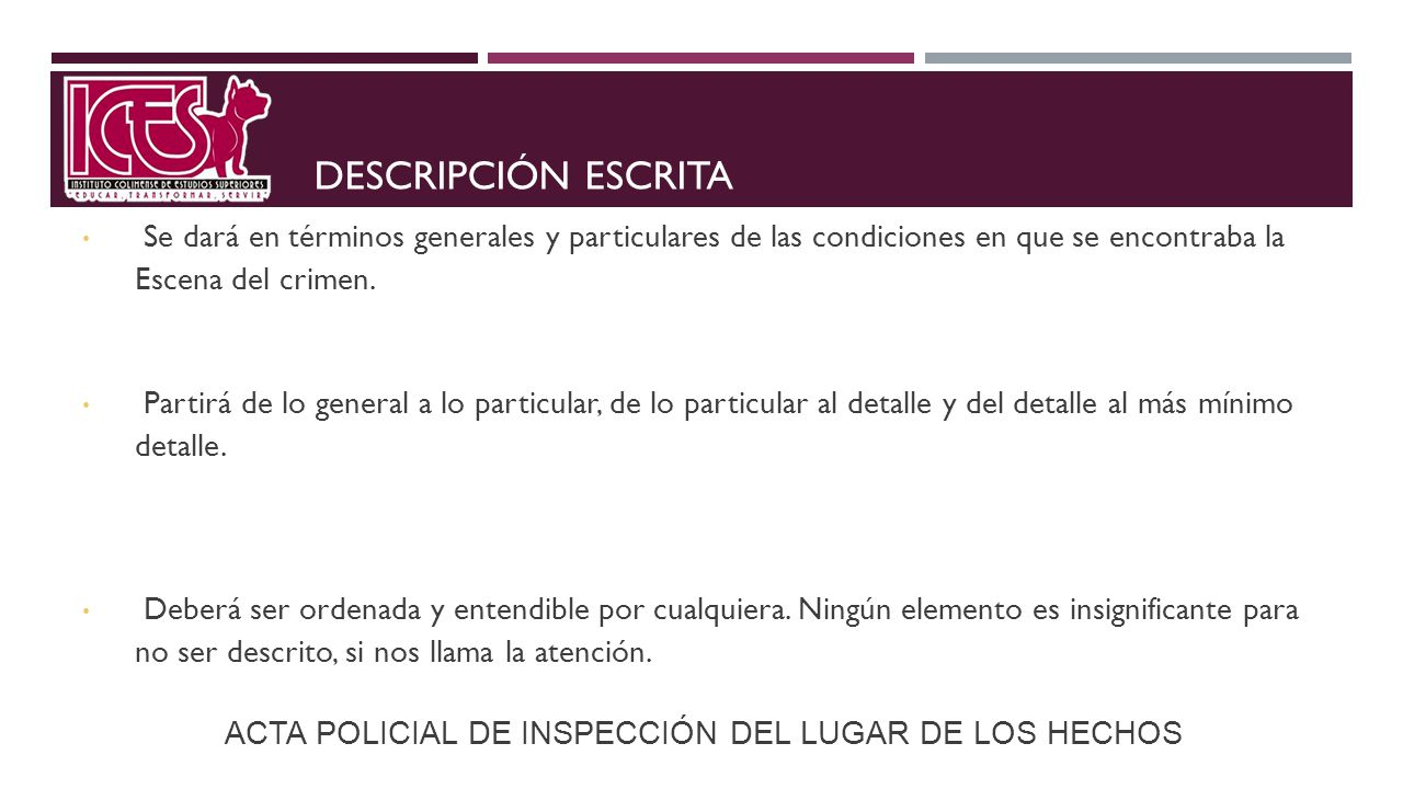 ACTA POLICIAL DE INSPECCIÓN DEL LUGAR DE LOS HECHOS