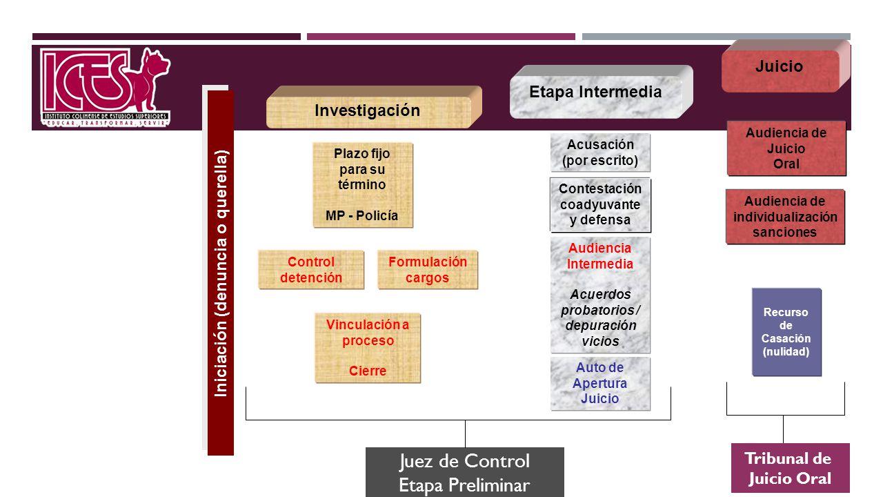 Juez de Control Etapa Preliminar Juicio Etapa Intermedia Investigación