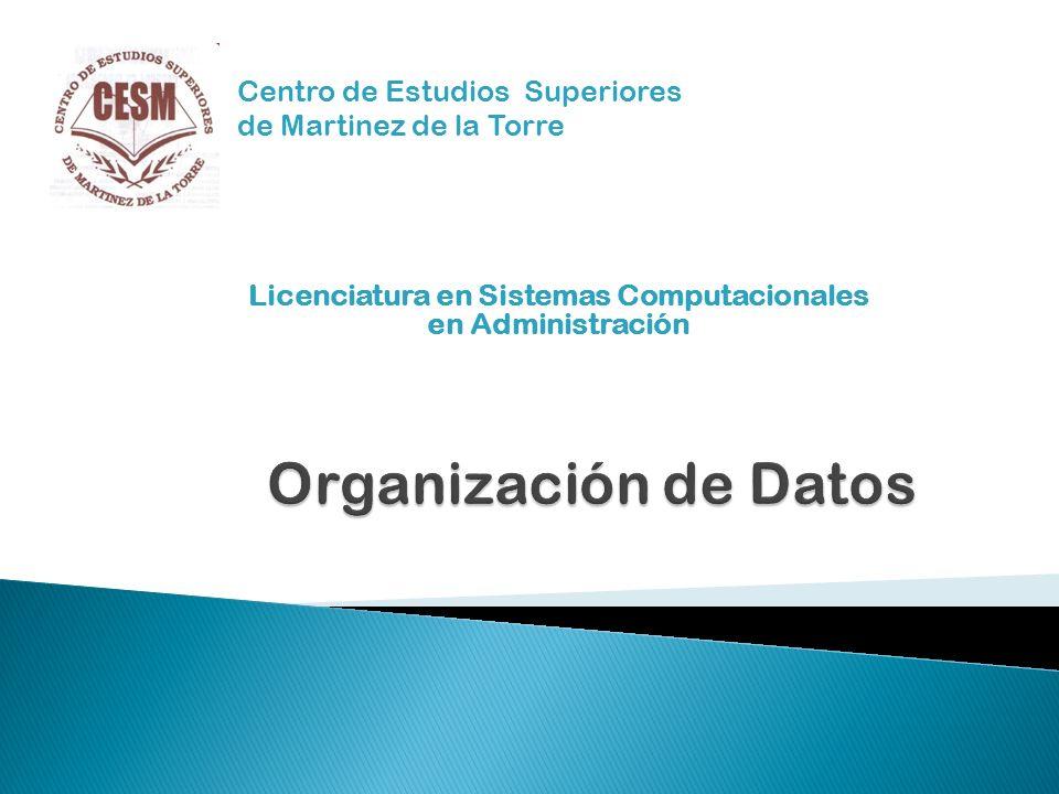 Licenciatura en Sistemas Computacionales en Administración