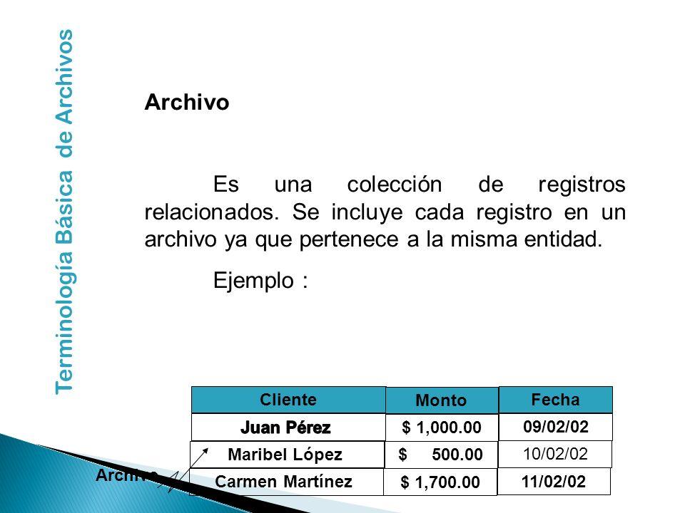 Terminología Básica de Archivos