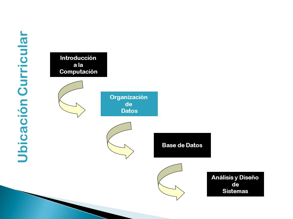 Ubicación Curricular Introducción a la Computación Organización de