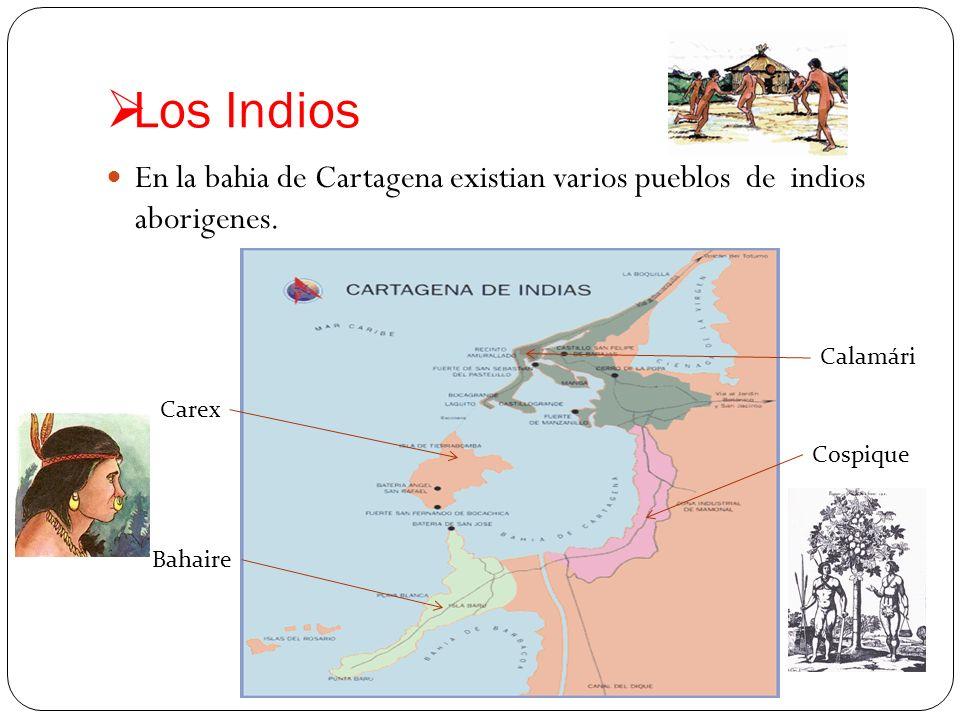 Los Indios En la bahia de Cartagena existian varios pueblos de indios aborigenes. Calamári. Carex.