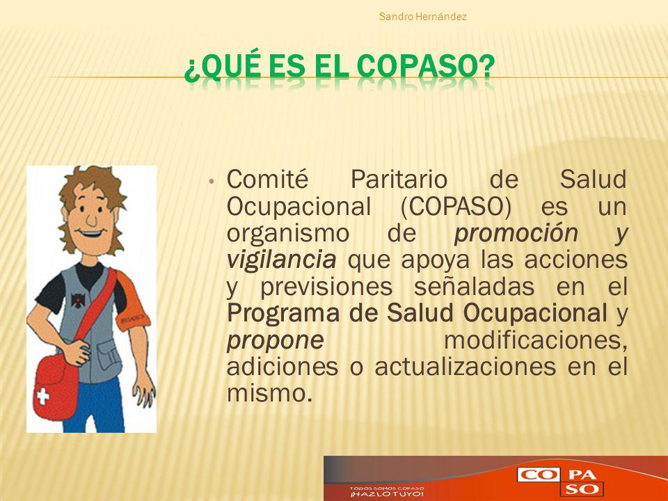Sandro Hernández ¿Qué es el COPASO
