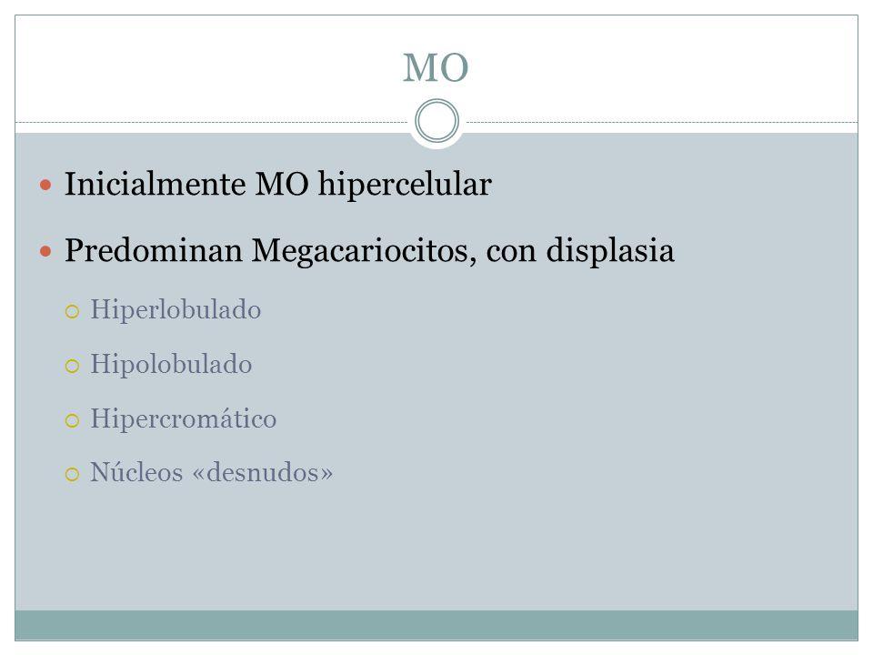 MO Inicialmente MO hipercelular