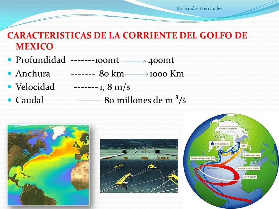 CARACTERISTICAS DE LA CORRIENTE DEL GOLFO DE MEXICO
