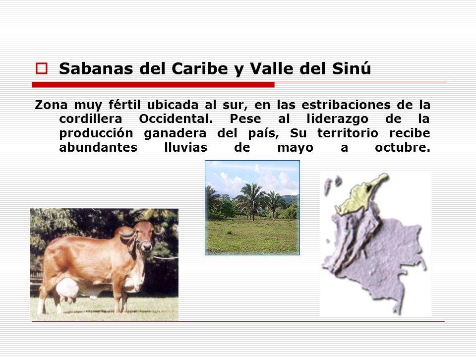 Sabanas del Caribe y Valle del Sinú
