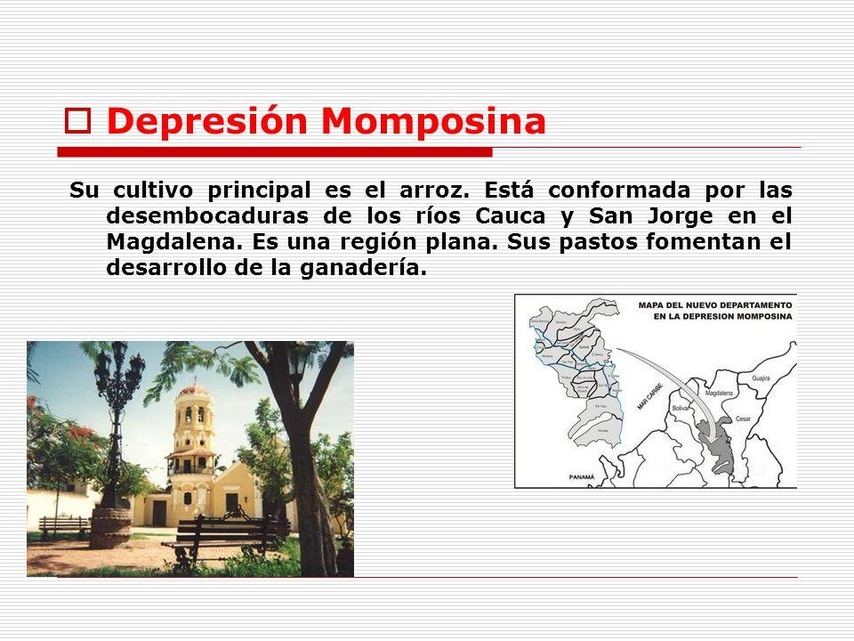 Depresión Momposina