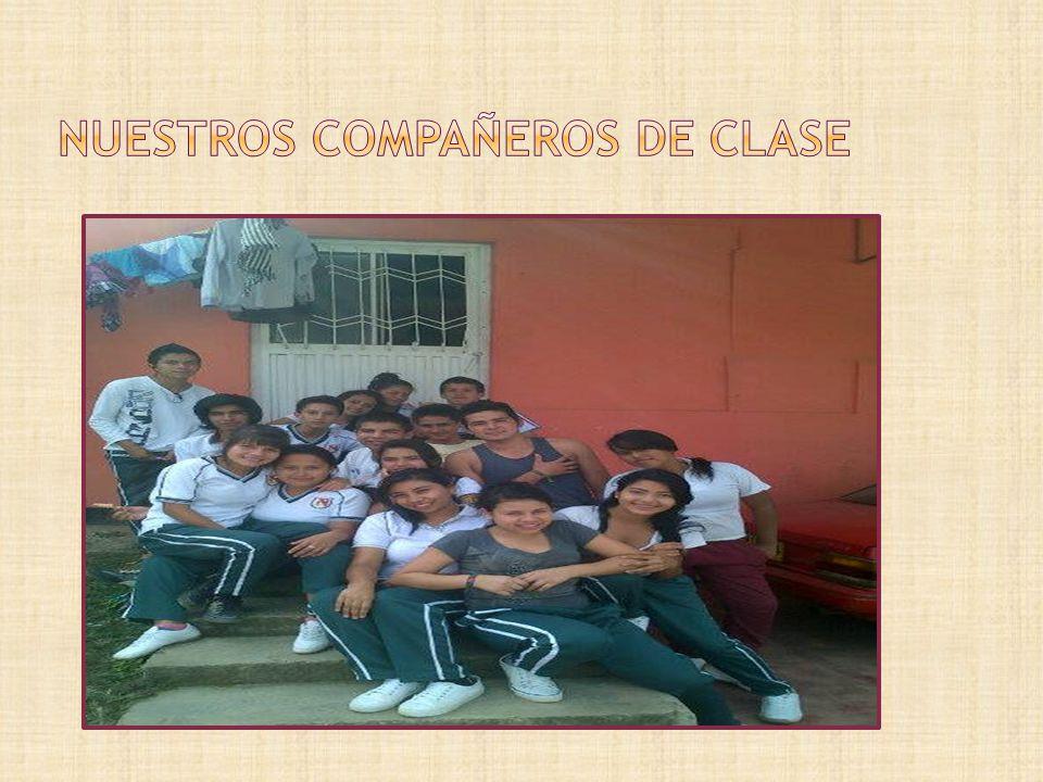Nuestros compañeros de clase