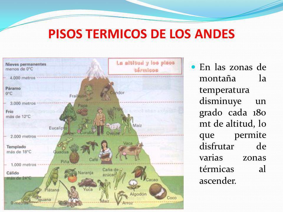 PISOS TERMICOS DE LOS ANDES