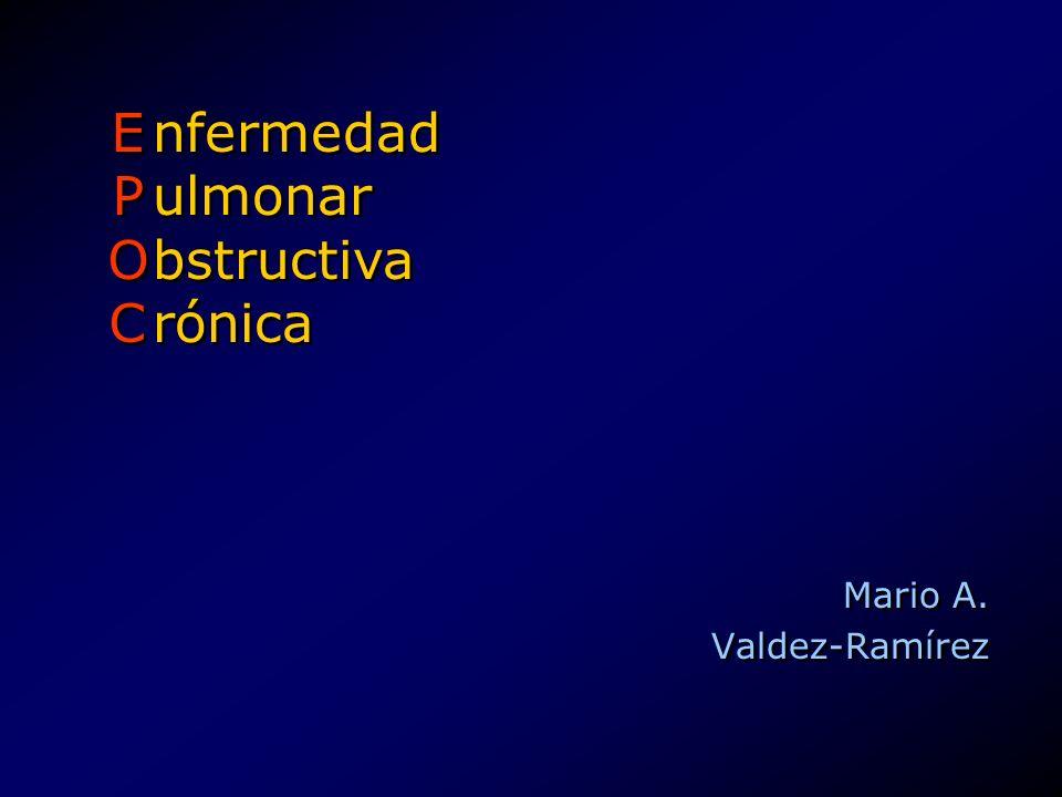 Mario A. Valdez-Ramírez