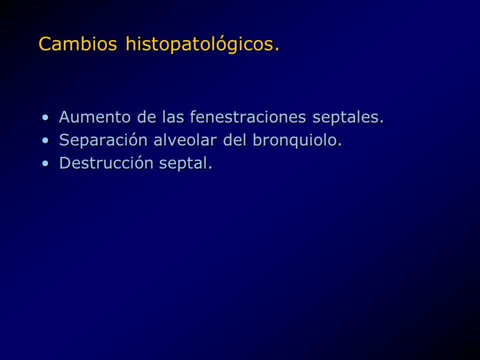 Cambios histopatológicos.