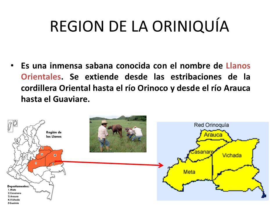 REGION DE LA ORINIQUÍA