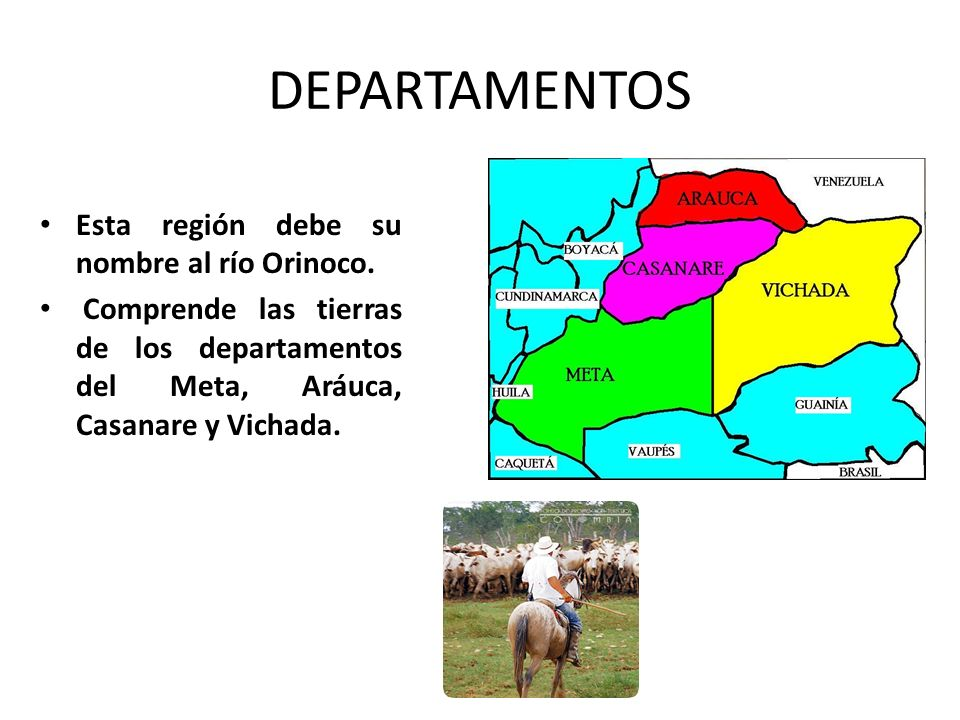 DEPARTAMENTOS Esta región debe su nombre al río Orinoco.