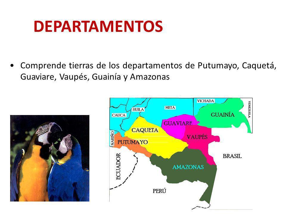 DEPARTAMENTOSComprende tierras de los departamentos de Putumayo, Caquetá, Guaviare, Vaupés, Guainía y Amazonas.