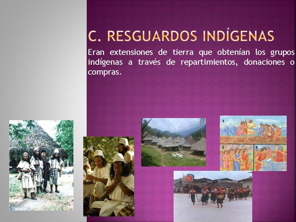 c. Resguardos Indígenas