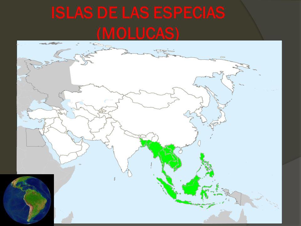 ISLAS DE LAS ESPECIAS (MOLUCAS)