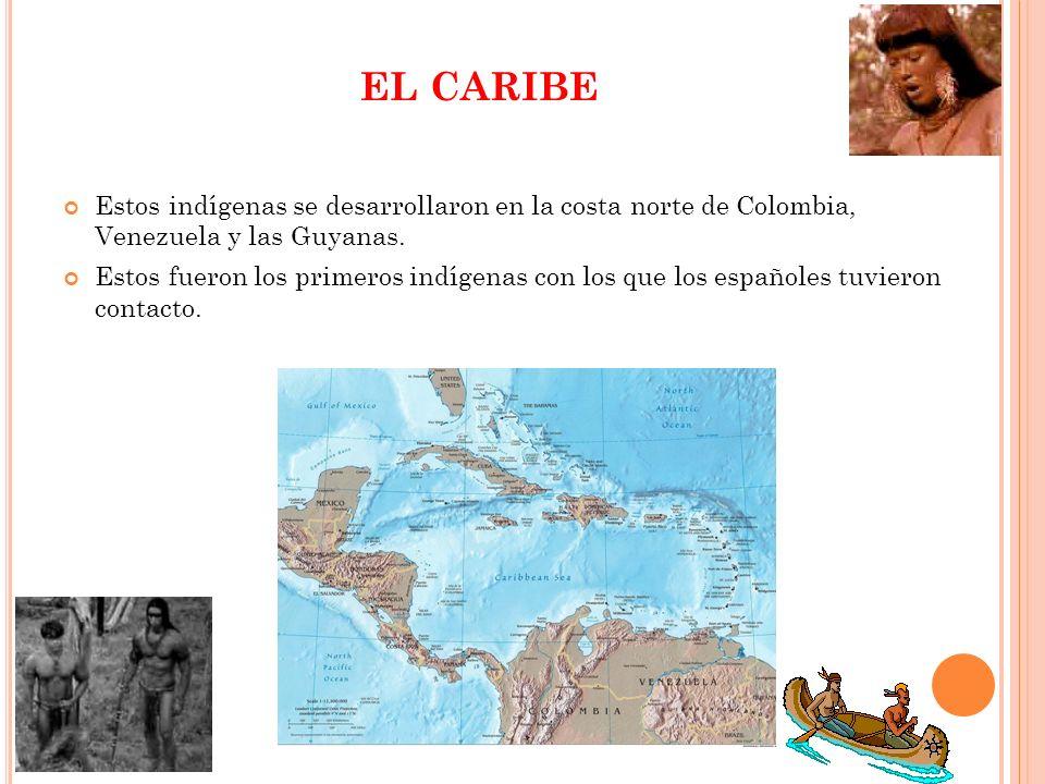 EL CARIBEEstos indígenas se desarrollaron en la costa norte de Colombia, Venezuela y las Guyanas.