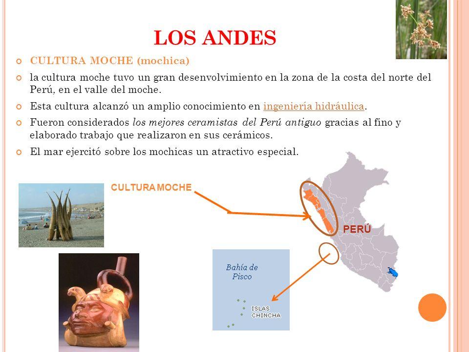 LOS ANDES CULTURA MOCHE (mochica)