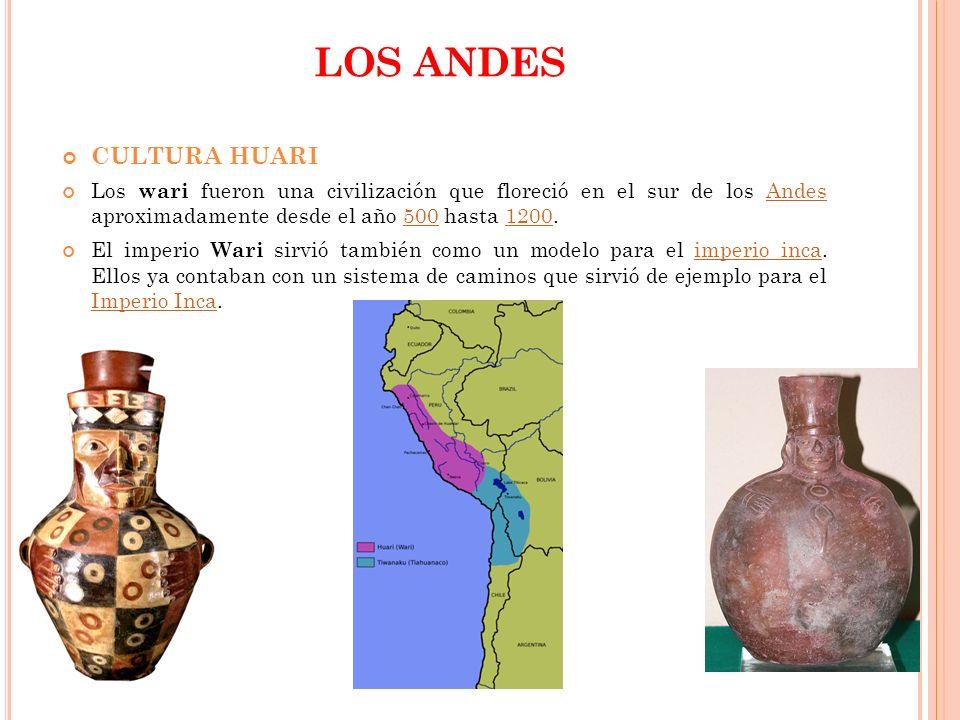 LOS ANDES CULTURA HUARI
