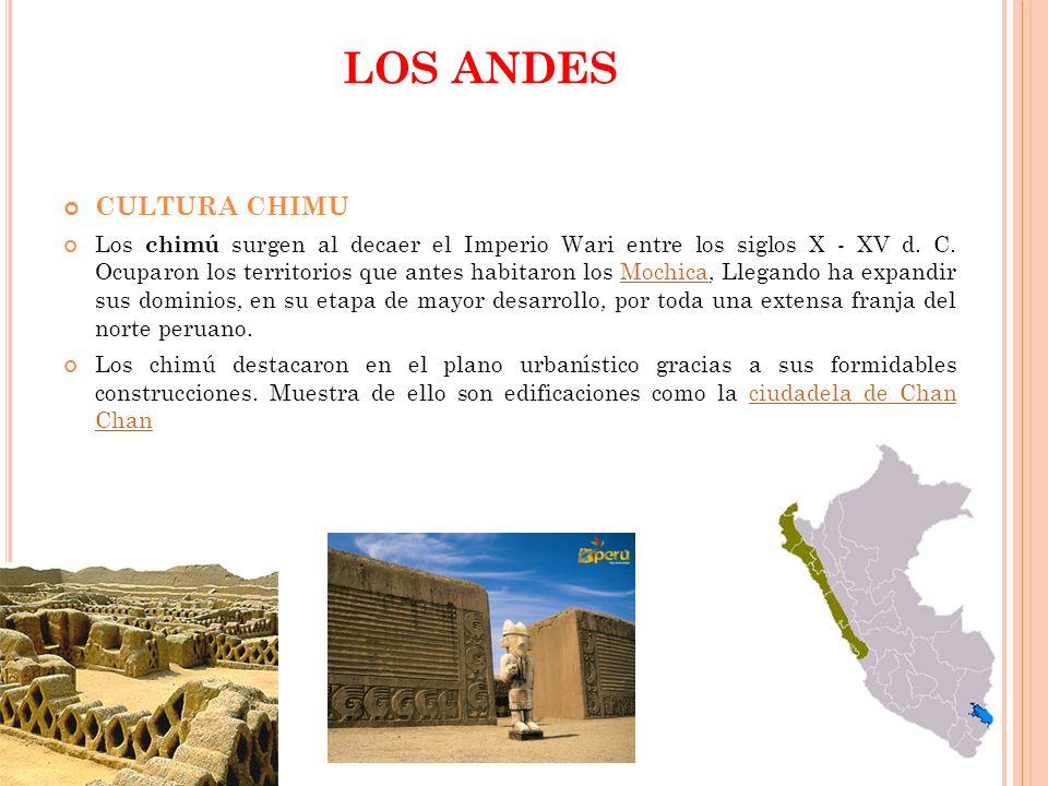 LOS ANDES CULTURA CHIMU