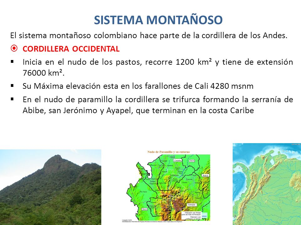 SISTEMA MONTAÑOSO El sistema montañoso colombiano hace parte de la cordillera de los Andes. CORDILLERA OCCIDENTAL.