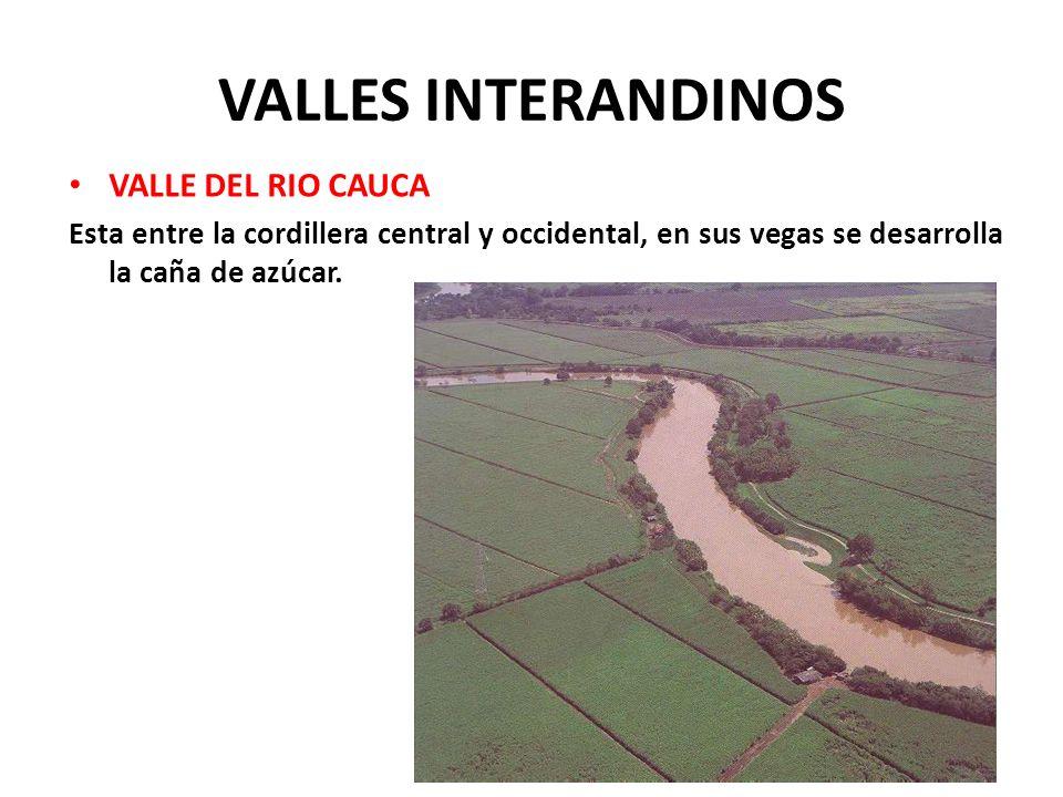 VALLES INTERANDINOS VALLE DEL RIO CAUCA