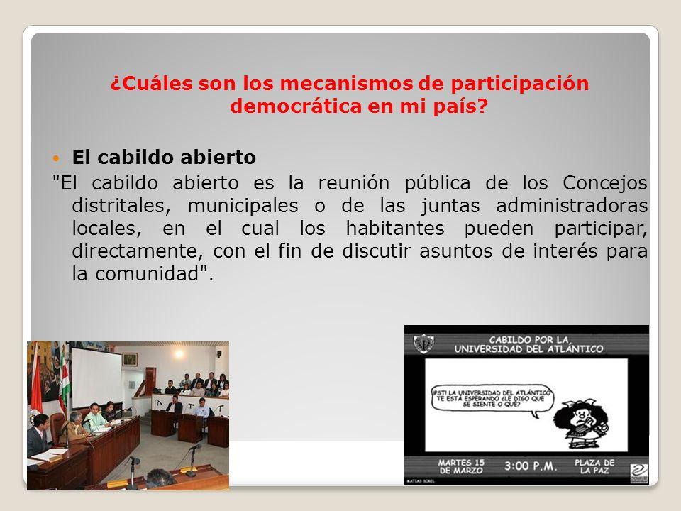 ¿Cuáles son los mecanismos de participación democrática en mi país