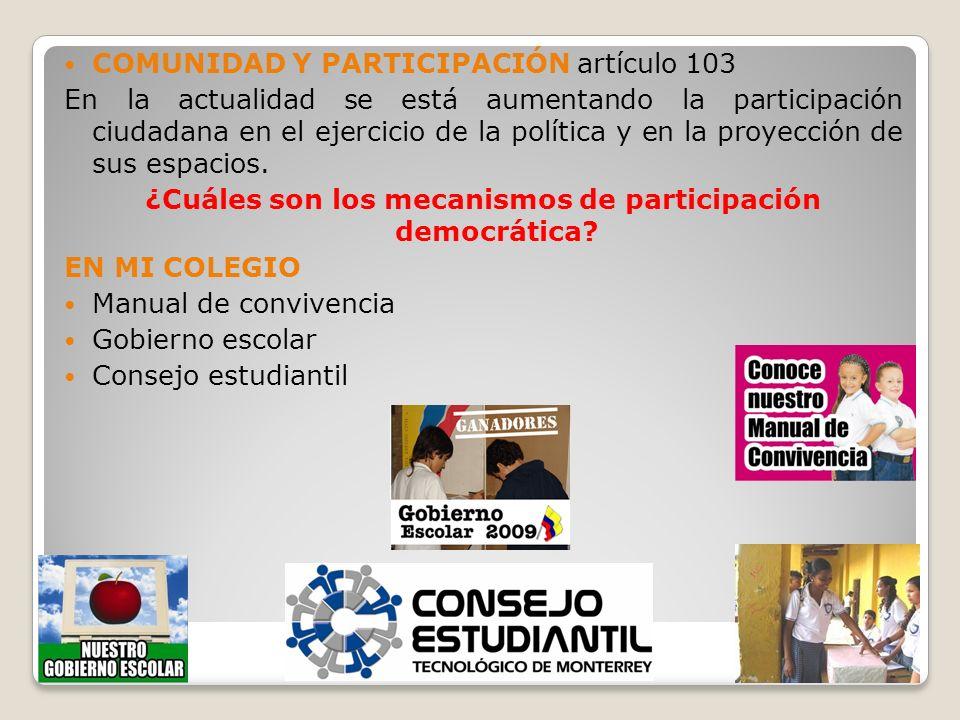 ¿Cuáles son los mecanismos de participación democrática