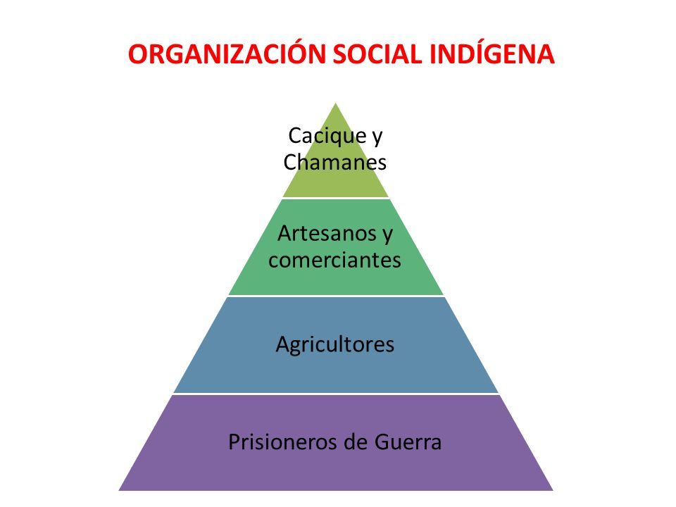ORGANIZACIÓN SOCIAL INDÍGENA
