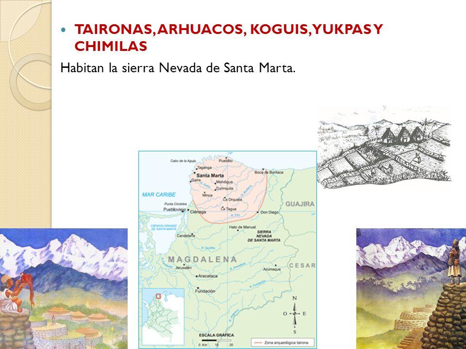 TAIRONAS, ARHUACOS, KOGUIS, YUKPAS Y CHIMILAS