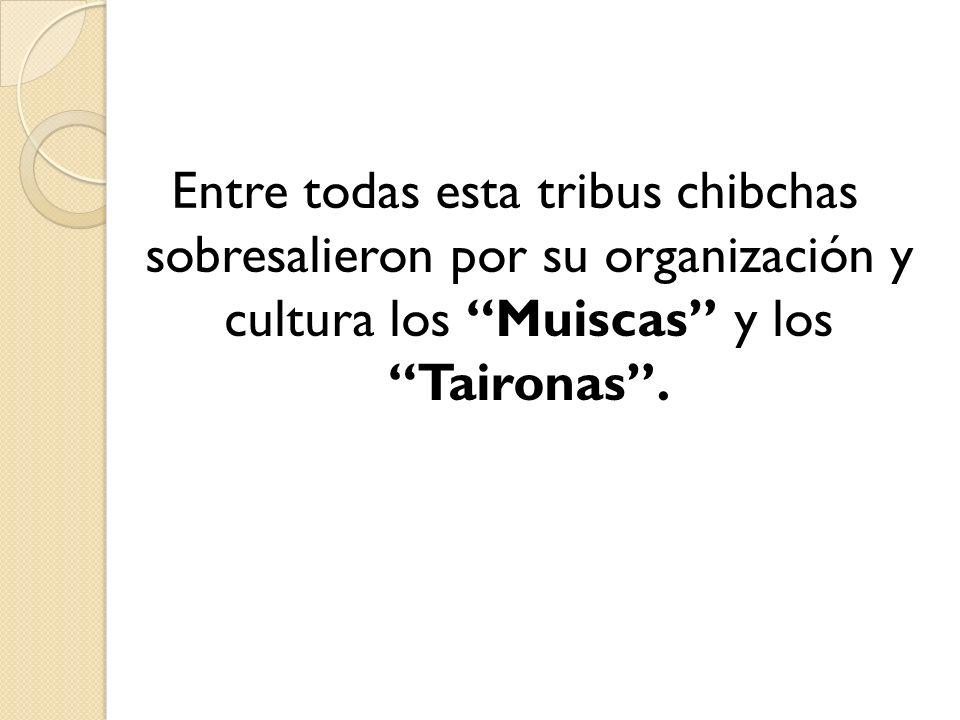 Entre todas esta tribus chibchas sobresalieron por su organización y cultura los Muiscas y los Taironas .