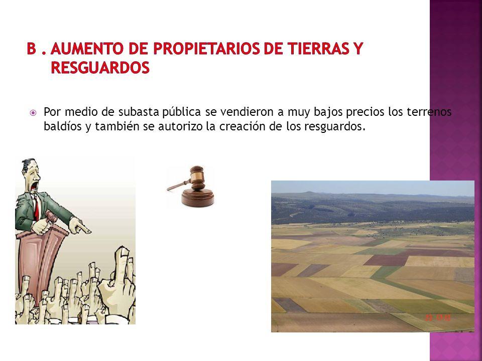 B . AUMENTO DE PROPIETARIOS DE TIERRAS Y RESGUARDOS