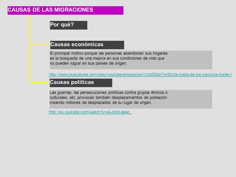 CAUSAS DE LAS MIGRACIONES