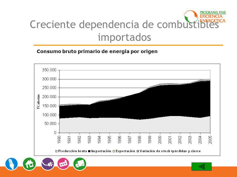Creciente dependencia de combustibles importados