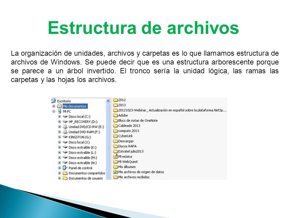 Estructura de archivos