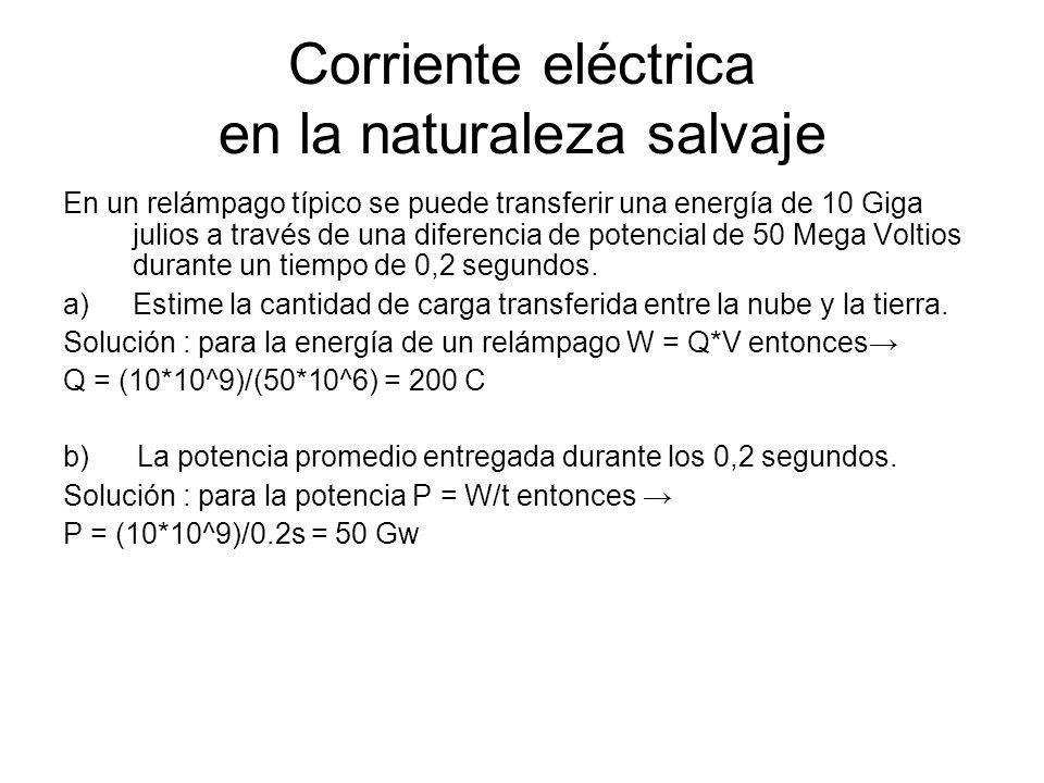 Corriente eléctrica en la naturaleza salvaje