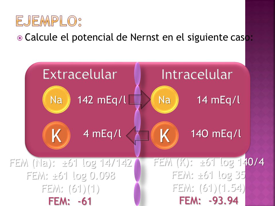 K K Ejemplo: Extracelular Intracelular Na Na 142 mEq/l 14 mEq/l