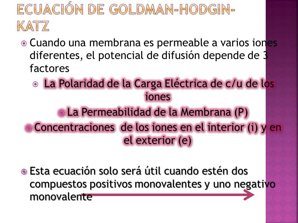Ecuación de Goldman-Hodgin-Katz