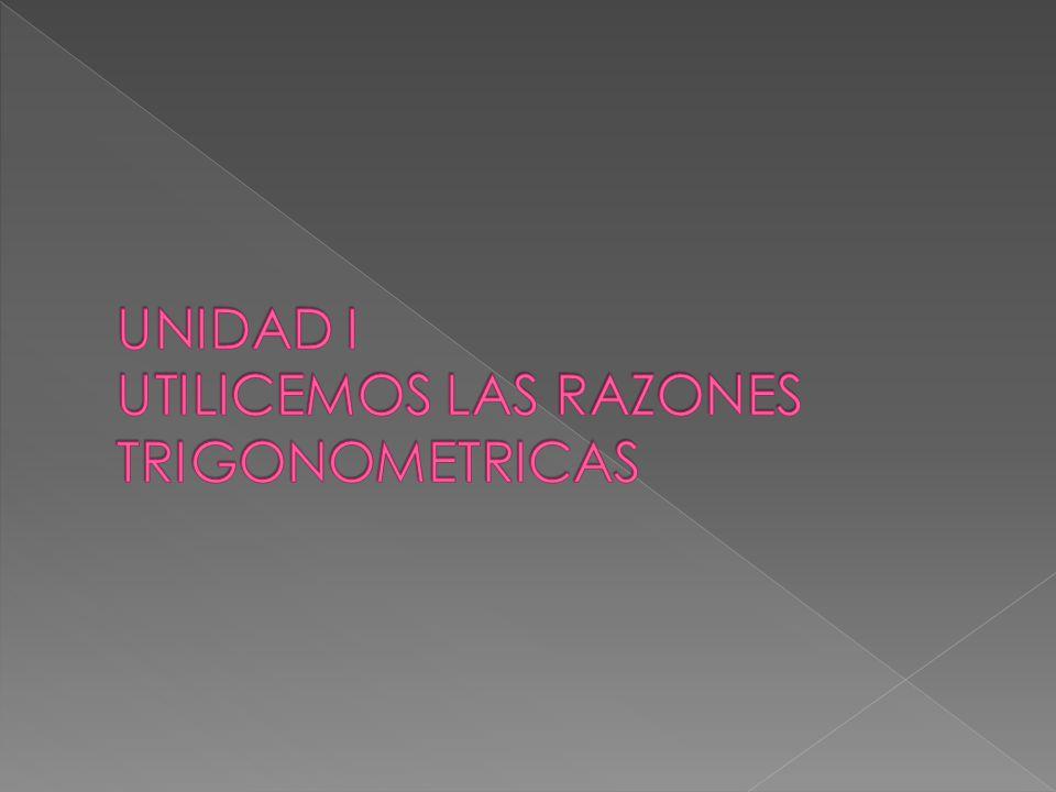 UNIDAD I UTILICEMOS LAS RAZONES TRIGONOMETRICAS