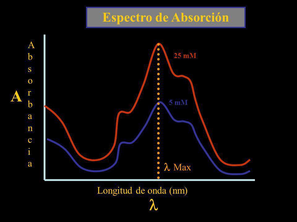 A l Espectro de Absorción l Absorbancia Max Longitud de onda (nm)