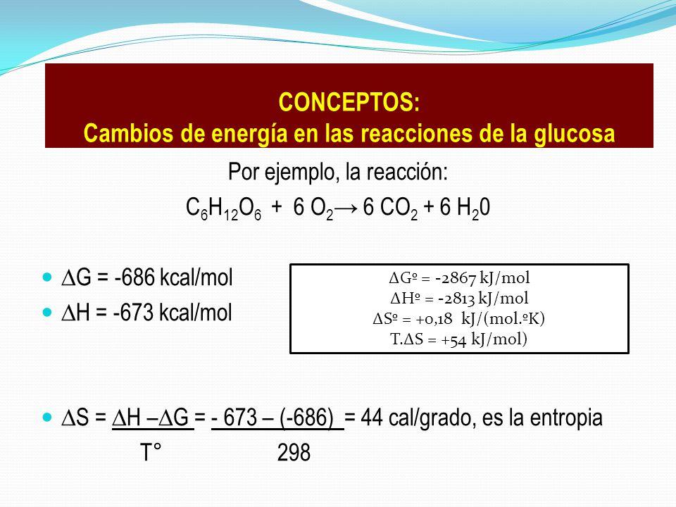 Cambios de energía en las reacciones de la glucosa